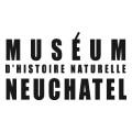 Musée de Neuchatel
